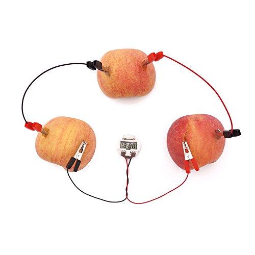 Battery-Potato Clock