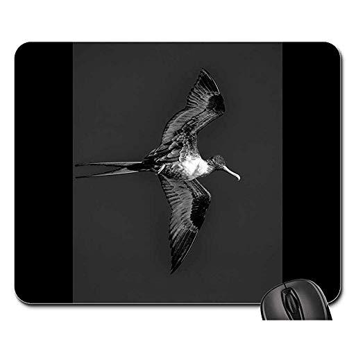 muismat fregat bermuda zwart en wit vogel vliegen vleugel muis pad muis mat muis pads muismat gaming mat 25x30cm