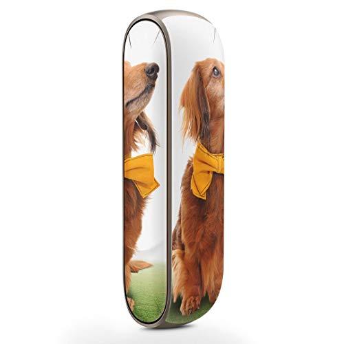 igsticker IQOS3 専用 デザインスキンシール IQOS 3 対応 シール IQOS 3 専用スキンシール フル アクセサリ 保護シール デコシール 002852 アニマル 犬 動物 写真