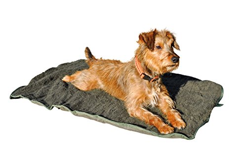 Outdoor ISO Hundebett 100 x 70cm