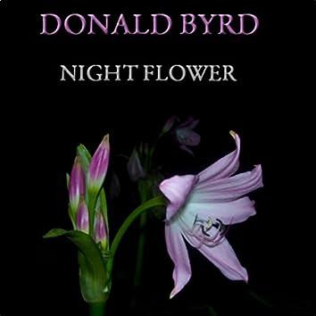 Night Flower (30 Original Tracks)