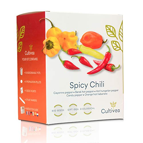 🌶️ Cultivea Mini Kit - Chili Anzuchtset - 100{13f6bc6d0f2bad064165221b914d928840f72255f8a5dede324045dea06c3816} BIO Samen - Garten und genießen - Geschenkidee (Cayenne-Chili, Barak-Chilli, ungarischer Pfeffer, Kandis-Pfeffer, Hot Habanero Chili) - Scharf & Mild -