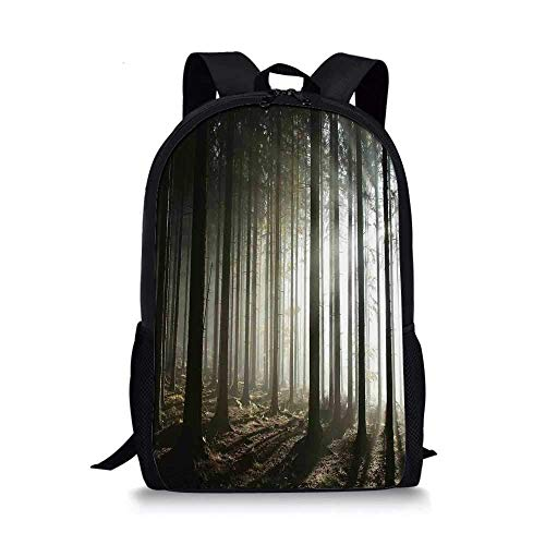 AOOEDM Backpack Forest Stylish School Bag,Coniferous Forest with Leafless Branches on a Misty Autumn Morning and Rising Sun for Boys,11''L x 5''W x 17''H