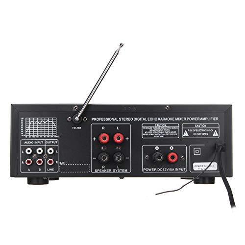 Viviance 800W 110V 2Channel Equalizzatore Bluetooth Home Stereo Amplificatore di Potenza USB SD Remoto