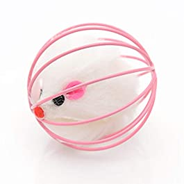 JIUY Cat's Funny Playing Toy Fake Mouse in Cage Ball Cats Toys Interactive Accessories For Cats Universal Pet Supplies(random)