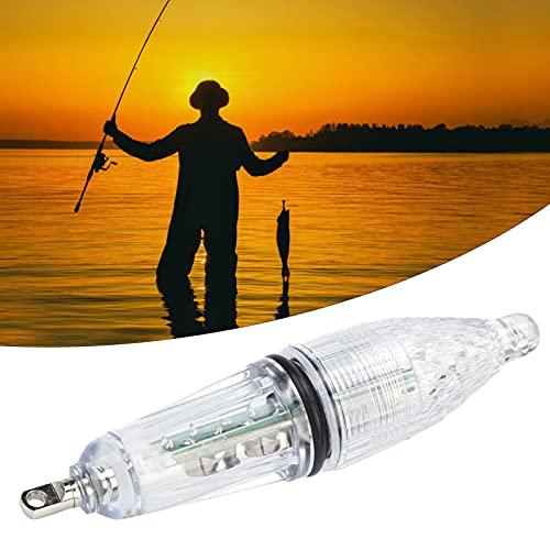 Rodi Lampe de calmar de pêche, Accessoire de pêche...