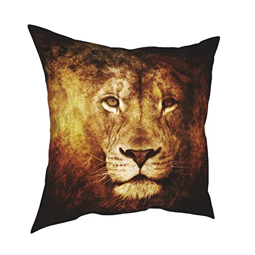 Fanbei Decorative Throw Pillow Covers Lion Brown Eyes, Solid Soft Square Pillow Case(No Insert), Home Decor Cushion Covers with Hidden Zipper for Couch/Sofa/Bedroom/Car-12 x12