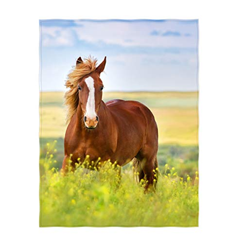 QH 60 x 80 Inch Beautiful Horse Pattern Super Soft Throw Blanket for Bed Sofa Lightweight Blanket Throw Size for Kids Adults All Season