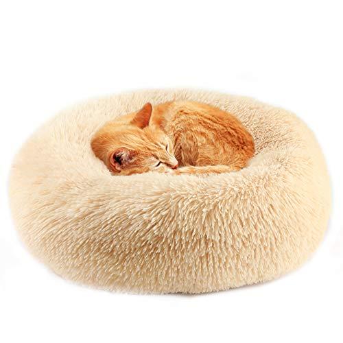 Vanansa Hundebett für Hunde und Katzen, Rundes Katzenbett Donut Plüsches Bett für Süßen Schlaf für Ihre Kleine Tiere Champagner 40cm