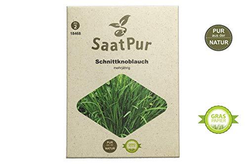 SaatPur Schnittknoblauch Samen, Saatgut für ca. 200 Pflanzen
