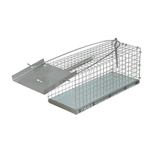 Lars Beger Trampas para Ratas Grandes, Ratones, Conejos y Gatos – Trampa para Ratones y Ratas - Ratonera - Trampa para Ratones Vivos - Cepos para Ratas - 27x11x11 cm