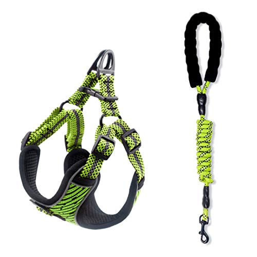 SUNGROO Dog Harness Lead Set, Soft Mesh Fabric,Adjustable Pet Vest for Medium Dogs,for Small Dog,Reflective Lead Comfortable Dog Harness,Harness Lead Set for Cats with Leash (Green, M)