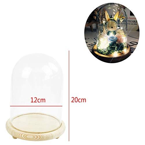 Warmiehomy Glasglocke mit Holzboden(Durchmesser 15 cm, Höhe 21 cm)