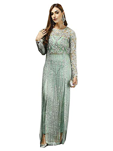 PISTA Designer Embellished Long Lenght Straight Net pakistaní musulmán Salwar Kameez vestido de fiesta 6552, Pista, XL