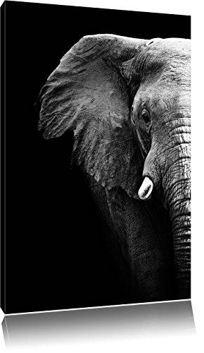 Pixxprint Elefant Porträt Format: 120x80 auf Leinwand, XXL riesige Bilder fertig gerahmt mit Keilrahmen, Kunstdruck auf Wandbild mit Rahmen, günstiger als Gemälde oder Ölbild, kein Poster oder Plakat