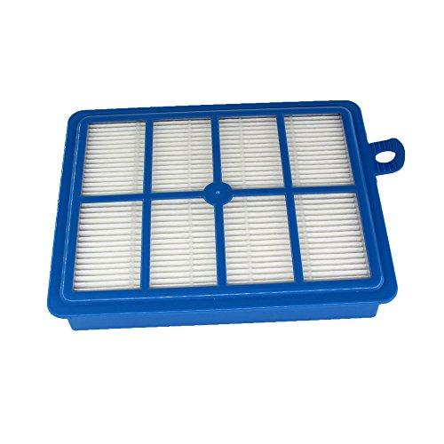Aisen Filtre HEPA Lavable EFH12 W pour pour Electrolux POWERSYSTEM Praxio Oxygen Excellio Power System