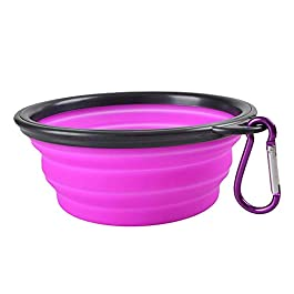Greetuny 1x Foldable Pet Bowl with Portable Carabiner Container Feed Bowl Water Dogs Accessories Cat Feeding Pet Feeder