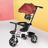 Triciclo para niños, triciclo de paseo 4 en 1 con asa de empuje ajustable, capota extraíble, placa de pie retráctil, pedal con cerradura, barandilla desmontable, apto para niños de 1 a 5 años, color
