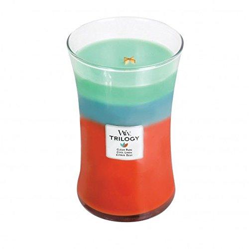 WoodWick 93964EU Bougie La Pluie, Le Linge et Les Agrumes, Trilogy, Ovale, Grande, Verre, Rouge/Turquoise, 10 x 10 x 18 cm
