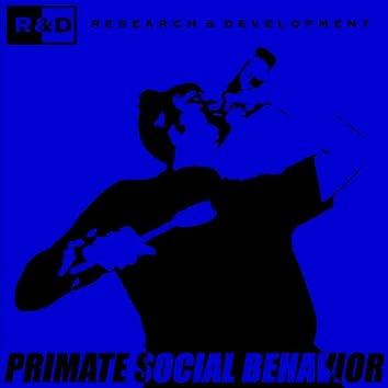 Primate Social Behavior