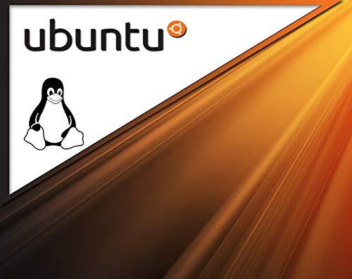 USB-Live Stick: Linux Ubuntu mit 64 Bit 8 GB USB 3.0