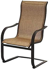 Patio Master Corp Outdoor Patio Bellevue Spring Chair