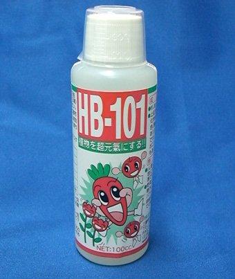 HB-101 100cc 天然活力剤 HB101 5cc1本と軍手サービス