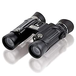 Best Binoculars For Stargazing UK - Steiner Wildlife 10,5x28 binocular - High magnification, superb resolution, compact & lightweight design - For detailed nature and animal observations