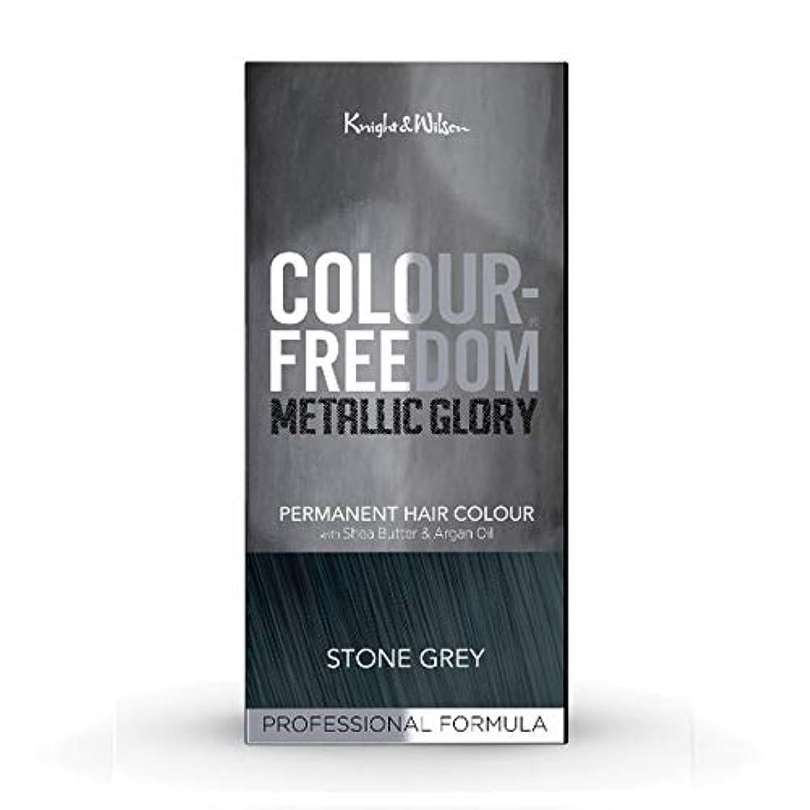 シェーバー本当にフォーカス[Colour Freedom ] カラー自由メタリック栄光の石のグレー417 - Colour Freedom Metallic Glory Stone Grey 417 [並行輸入品]
