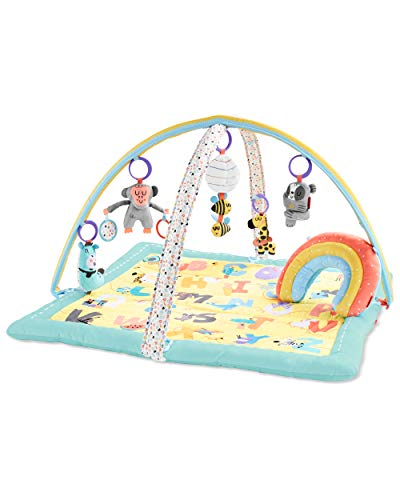 Skip Hop ABC & Me Grow & Play Baby Play Mat & Infant Activity Gym, Multi