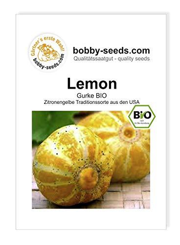 Lemon Freilandgurke BIO-Gurkensamen von Bobby-Seeds, Portion