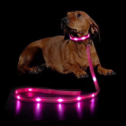 MASBRILL LED Hundeleine, 120cm Leuchtleine für kleine, mittelgroße und große Hunde, USB wiederaufladbar und wasserdicht, 5 Farben erhältlich, Sicherheit Ihres Haustieres bei Nacht(Pink)