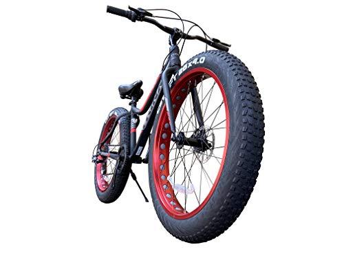 TRINX(トリンクス) ビーチクルーザー 【ファットバイク】迫力の極太タイヤ Wディスクブレーキ 軽量アルミフ...