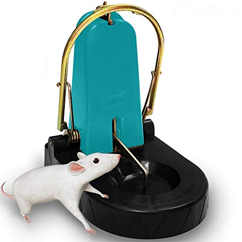 Large Rat Trap, Set of 4, Reusable Indoor Outdoor Pest Control Solutions for Trapping rats,...