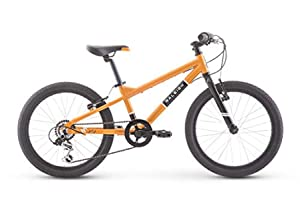 Best 20-inch Kids Bikes for Ages 6 to 8 Raleigh Rowdy 20 - Best Budget: Mountain