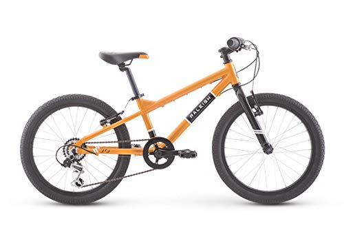 Product Image of the RALEIGH Bikes Rowdy