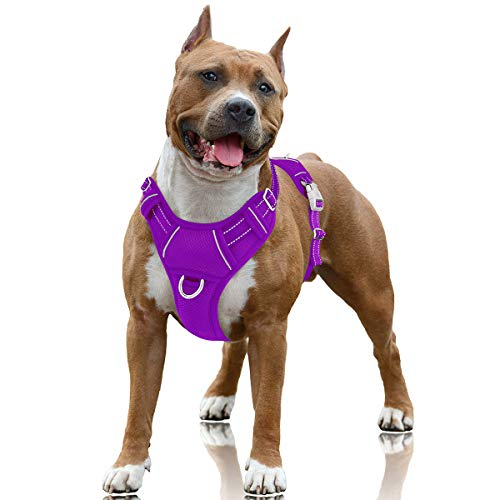 BARKBAY No Pull Dog Harness Large Step in Reflective Dog Harness with Front Clip and Easy Control Handle for Walking Training Running with ID tag Pocket(Purple,L)