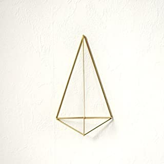 Colgante para planta de aire, soporte de pared planta Polyhedron No01, colgador clavel de aire, decoración pared plantas
