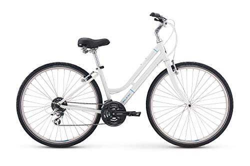 Purchase Raleigh Bicycles Detour 2 Comfort Hybrid Bike (Renewed)