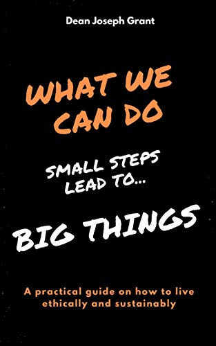What We Can Do: Small Steps Lead To ... Big Things (English Edition)
