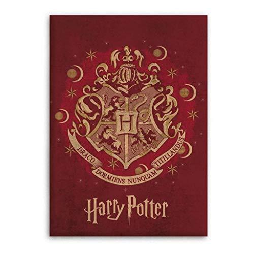Harry Potter Kids Blanket Throw Polar Fleece - Red - 100x140 cm