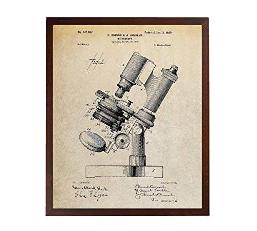 Turnip Designs Microscope Patent Poster Biology Teacher Gift Pharmacy Student Science Poster Chemistry Art Tech Art Vintage TDP242