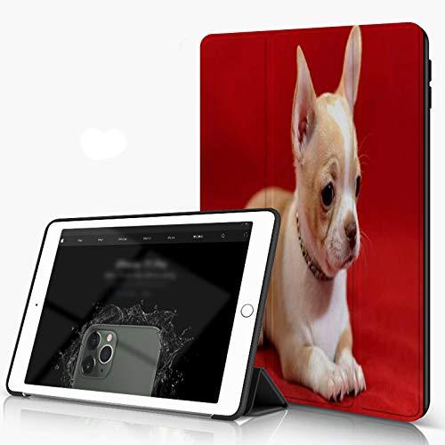 Carcasa para iPad 10.2 Inch, iPad Air 7.ª Generación ,Perro de pelo corto Chihuahua cachorro acostado rojo aislado pequeños animales en la,incluye soporte magnético y funda para dormir/despertar