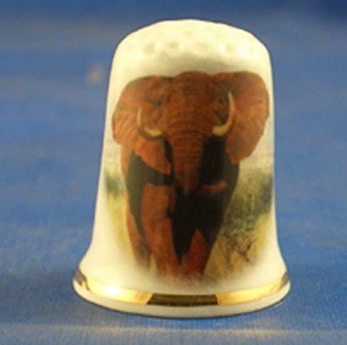 Porcelaine anglaise de collection avec dé à coudre en porcelaine Motif éléphant africain