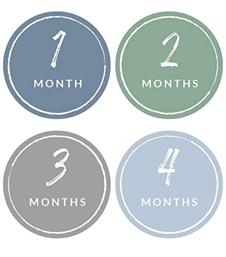 Modern Maxwell Baby Boy Milestone Month Stickers 16 Pack Age 1 to 12 Month Age 4 Inches Blue and Gray Perfect for Pictures and Scrapbooks
