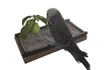 Super Siège Planche 20x10cm avec bois naturel pour perruche calopsitte| platforme pour Cage a Oiseaux perroquet| plateau, accessoires d'oiseaux allonger, asseoir, dormir