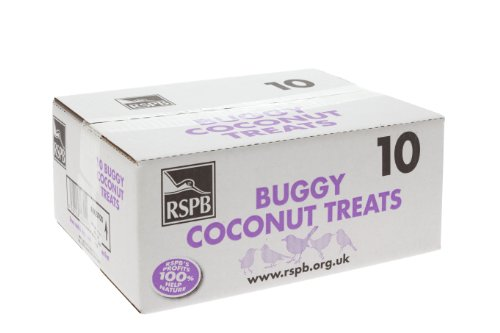 RSPB Buggy Cocont Shell Treats (Box of 10)