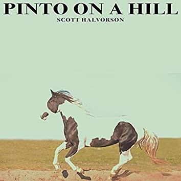 Pinto on a Hill