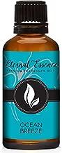 Ocean Breeze Premium Grade Fragrance Oil - Scented Oils - 30ml