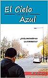 EL CIELO -YA NO ES- AZUL: ¿Cuál decisión es la correcta?